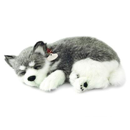Alaskan Husky Bundle