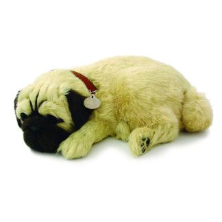 Pug Bundle