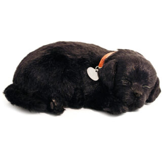 Black Lab Bundle